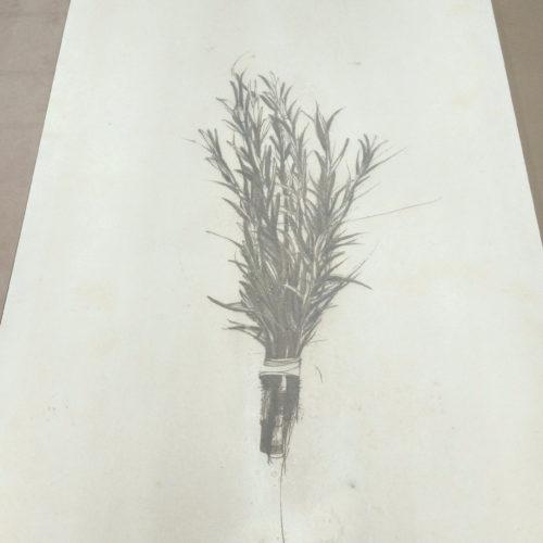 Marcature su pannelli in Viroc